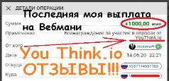 Реальный отзыв о опроснике You Think! 2000р. мой доход!